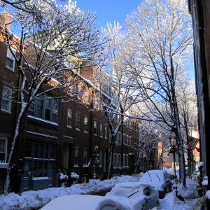 Sparkling Photos from our Double Snow Day in Boston