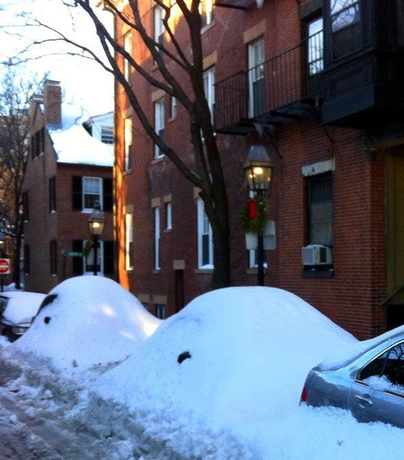 Cars? Snow banks? Animals?