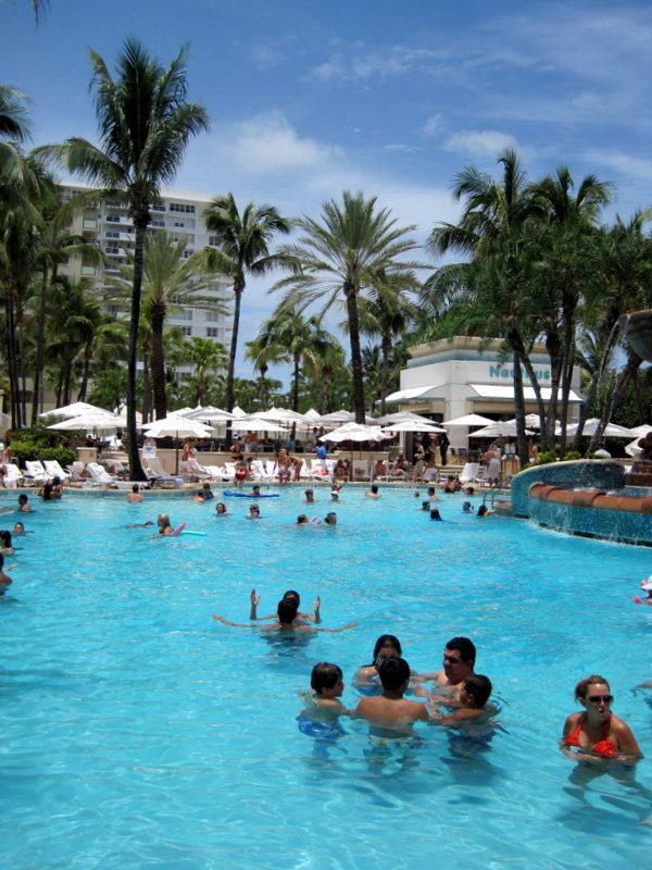 One of many luscious South Beach hotel pools.