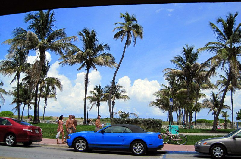 One of many luscious Miami cars, viewed from our lunch spot.