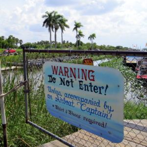 Danger and Glory in Everglades National Park of Florida