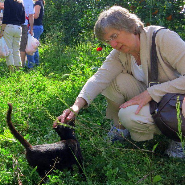 Famous writer, Sarah Ellis, befriended the kitten.