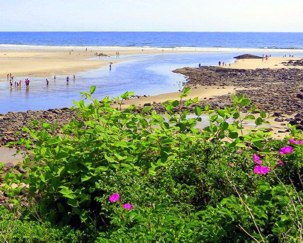 Ogunquit, Maine: Site of our most recent 24-hour travels!