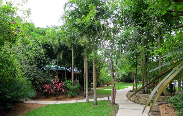 Ka'ana has masterfully integrated Belize's lush jungle with beautiful architecture and comfort.