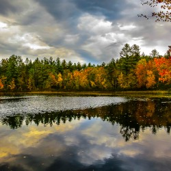 Amazing Fall Foliage in Rainbow New England Glory of NH