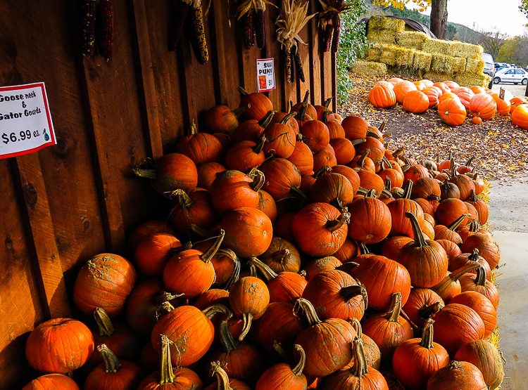 Luscious farm stands: The key to perfect travel through New England!