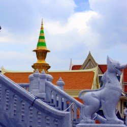The Temples of Bangkok