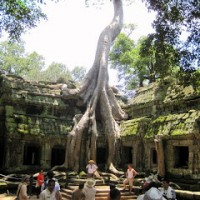 Mother Love: Angkor Wat, Part 2