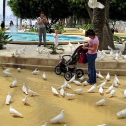 Three Lovely Moments from Benidorm, Spain, in Photos