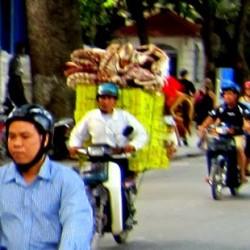 Vietnam's Spunk!
