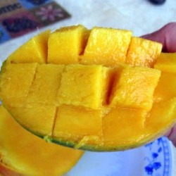A Brilliant Method of Eating Mangoes