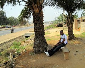 Starting to Understand Accra… and Staying Legal