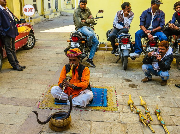 A DOUBLE snake charmer in another spot of our India tour.