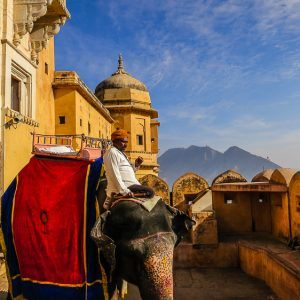 Riding an Elephant Up to the Amber Palace in India