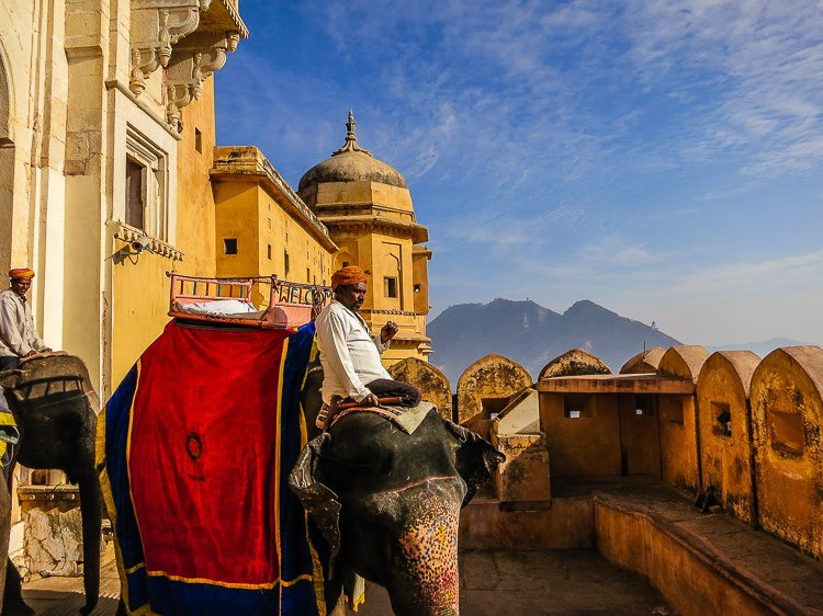 Would you ride an elephant up a mountain to the Amber Palace in India?