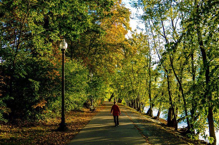Walking towards Autumn.
