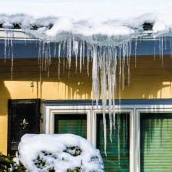 The Miracle of the Icicle from Antarctica-Boston