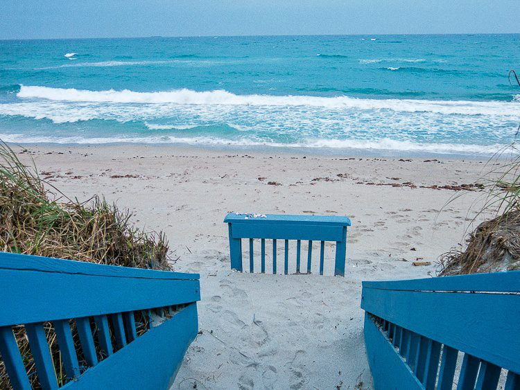The ocean is endlessly calming...