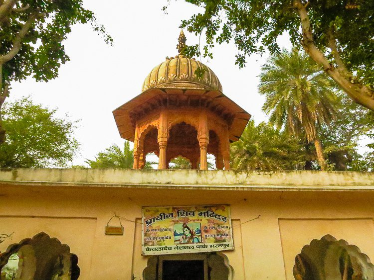 Whoa! A working temple in the middle of the bird sanctuary!