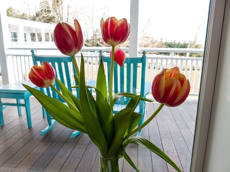 All there is to do is eat, gaze at flowers, and rock on the porch. Not too shabby!