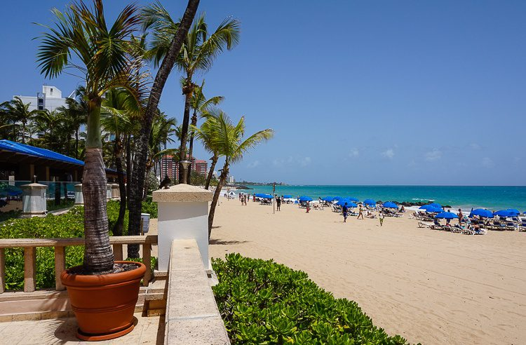 This luscious beach is right outside the dining room.