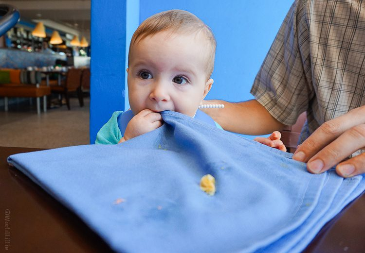 Eating the napkin? Sure, why not?
