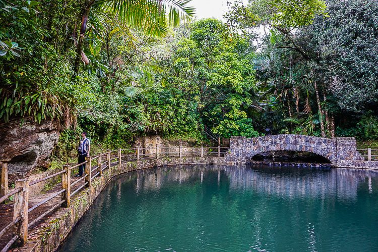 Baño Grande is a lovely body of water to walk around in the rainforest.