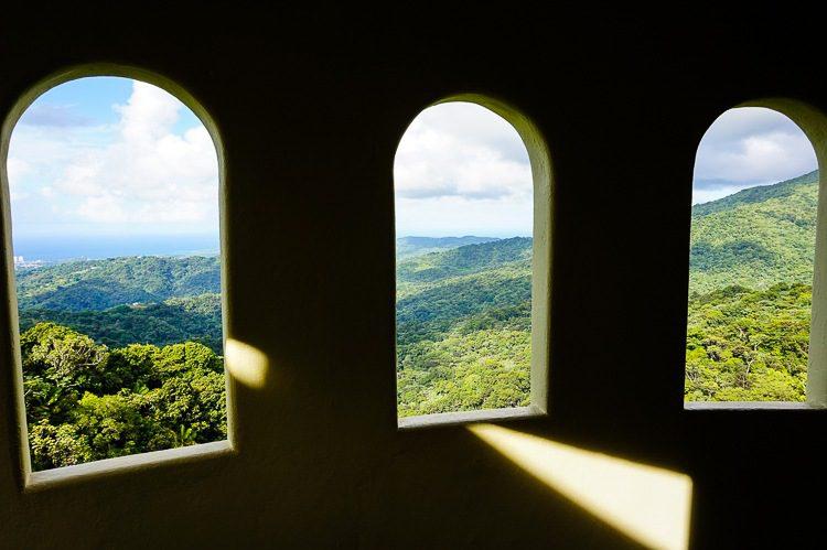 Peeking at the view while climbing Yokahu Tower.