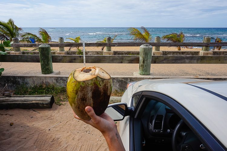 Coconut Puerto Rico car rental