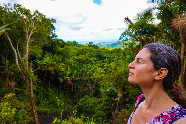 I converted my hair dye money into this Puerto Rico trip! (Pictured here: El Yunque Rainforest.)