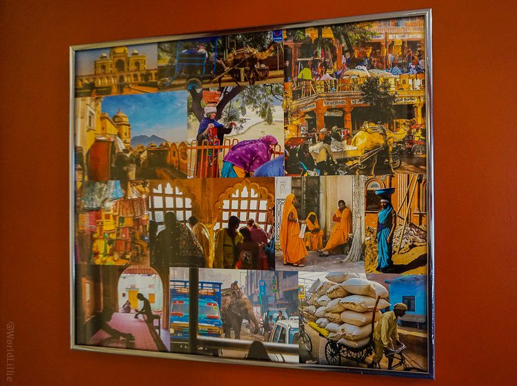This collage shows images of our travels in India, Elephants and all.