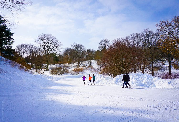 These are some hardcore snow runners!