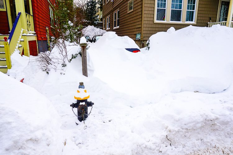 Can you see that car buried in the driveway?