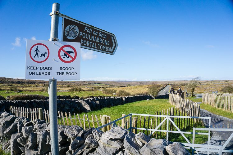 The entrance to Poulnabrone dolmen. No dog waste on the portal!