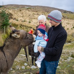 Ireland's Most Unexpected Best Tourist Attraction