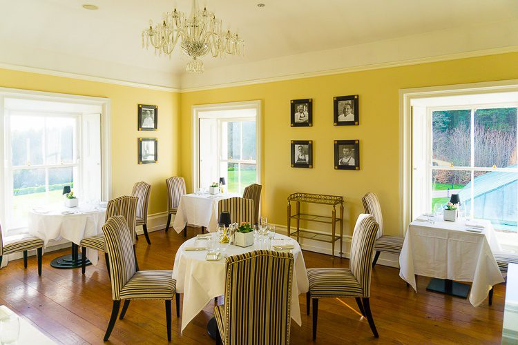 In the morning we did a happy jig down to breakfast in this sunny yellow dining room.