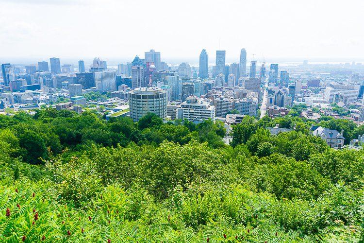 Parc du Mont-Royal covers a large part of Montreal!