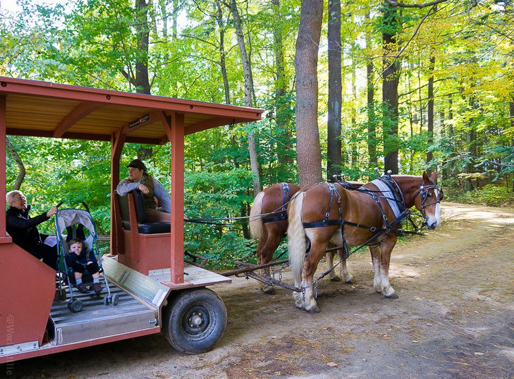 The horse-drawn buggy even fits a stroller! Old Sturbridge Village