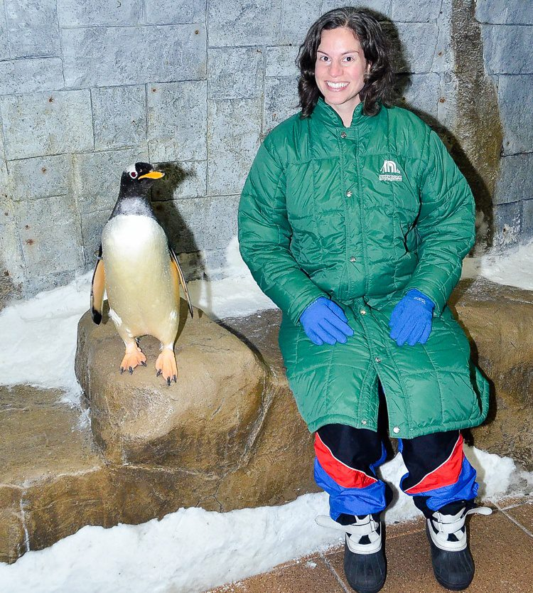 Can you tell how excited I am to be hanging out with penguins?