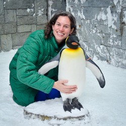 Cuddling Live Penguins in Dubai?! I Promise This is Real!