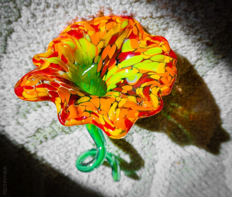 I can't believe I made this glass flower.