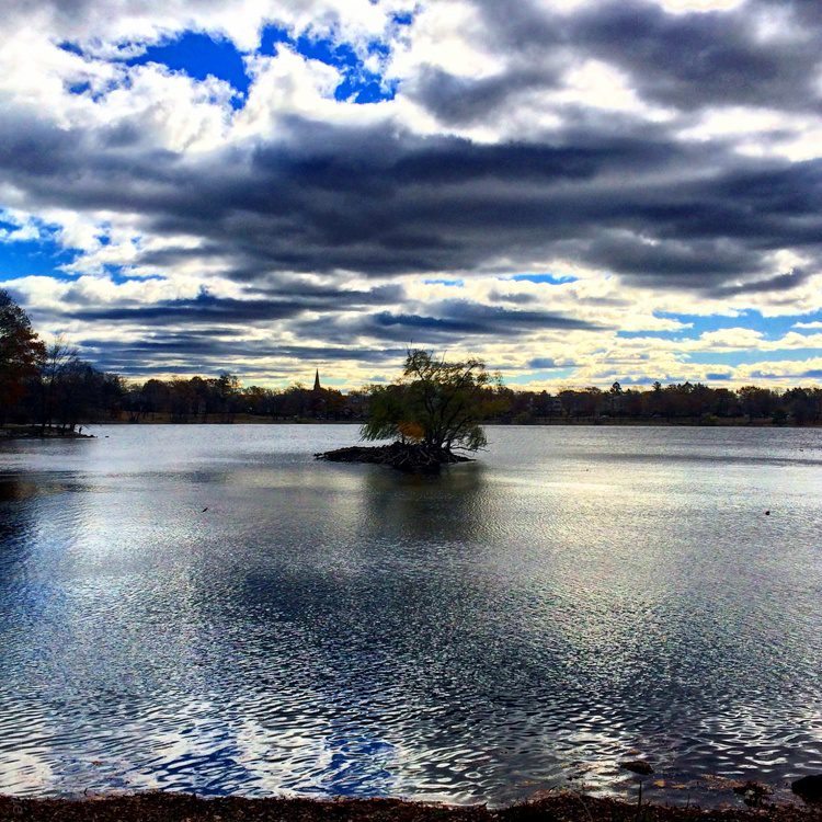Clouds reflecting in Jamaica Pond, Boston.