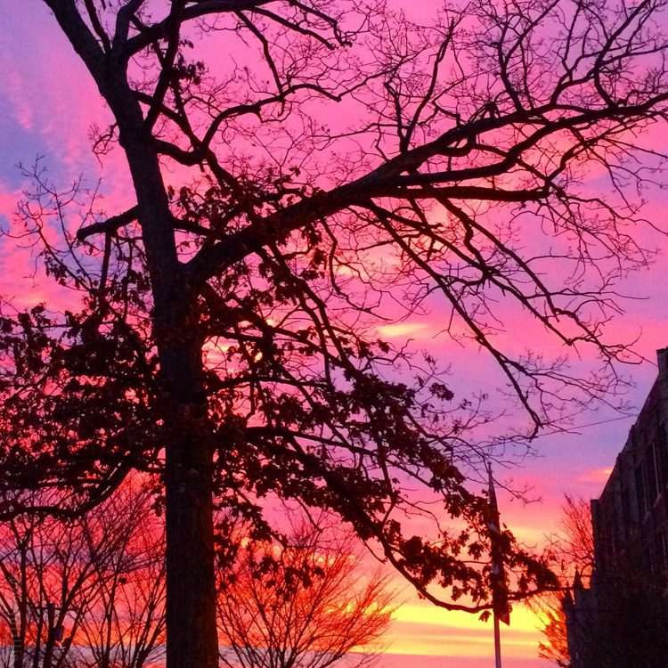 What makes a popular travel post? Pictured: A gorgeous purple and pink sunrise in Boston.