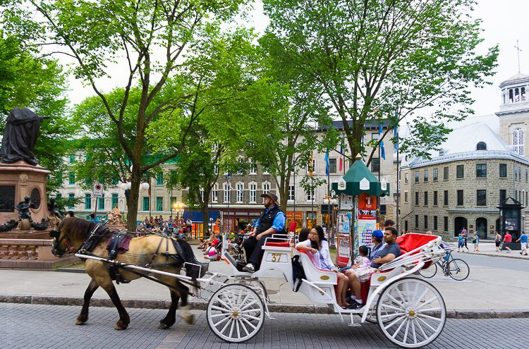 There are plenty of old-fashioned horse-drawn carriages in Old Quebec.