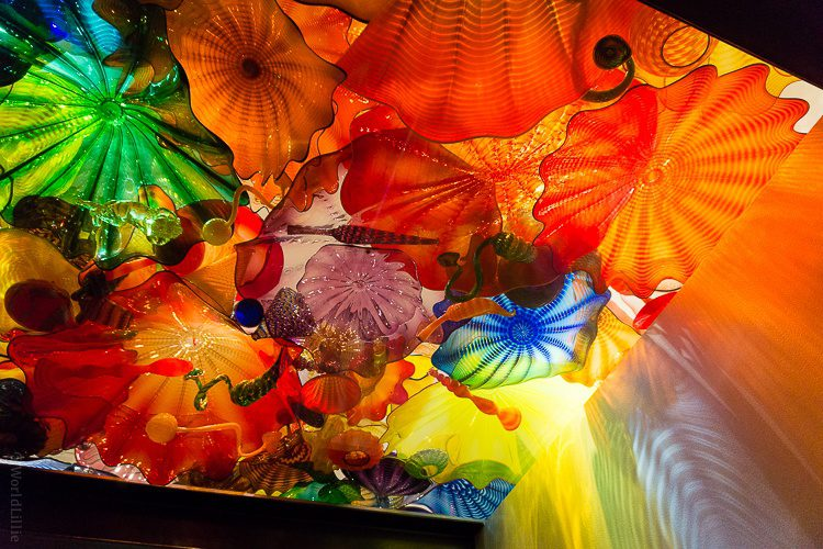 Thank you for making the world's eyes so happy, Chihuly!