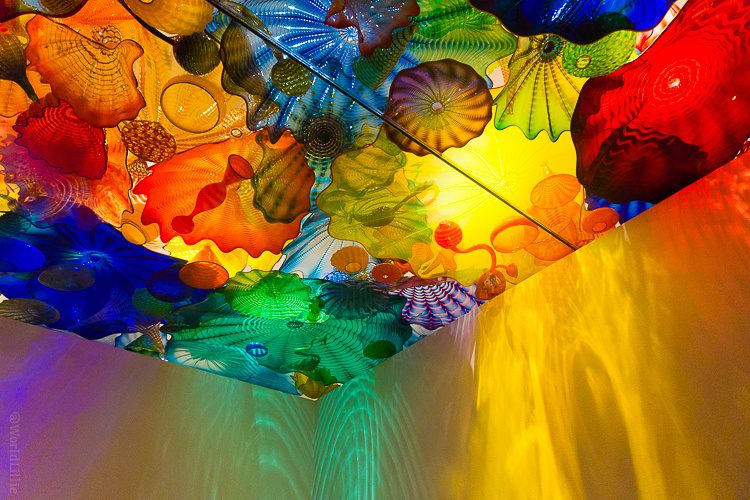 The Chihuly glass art exhibit in Seattle, WA is out of this world.