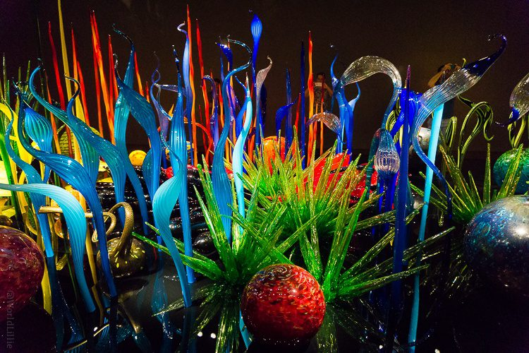Chihuly glass museum in Seattle: Spiky glass plants in your face!