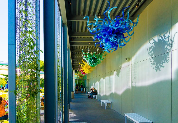 Classic Chihuly chandeliers in the outdoor walkway.
