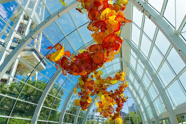 Can you see the bottom of the Space Needle outside this greenhouse?