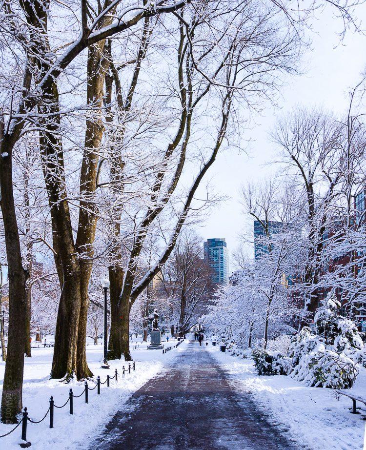 Entering the Boston Public Garden at Arlington St. and Boylston St.